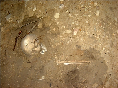 Remains Found at Ute Mountain Tribal Park