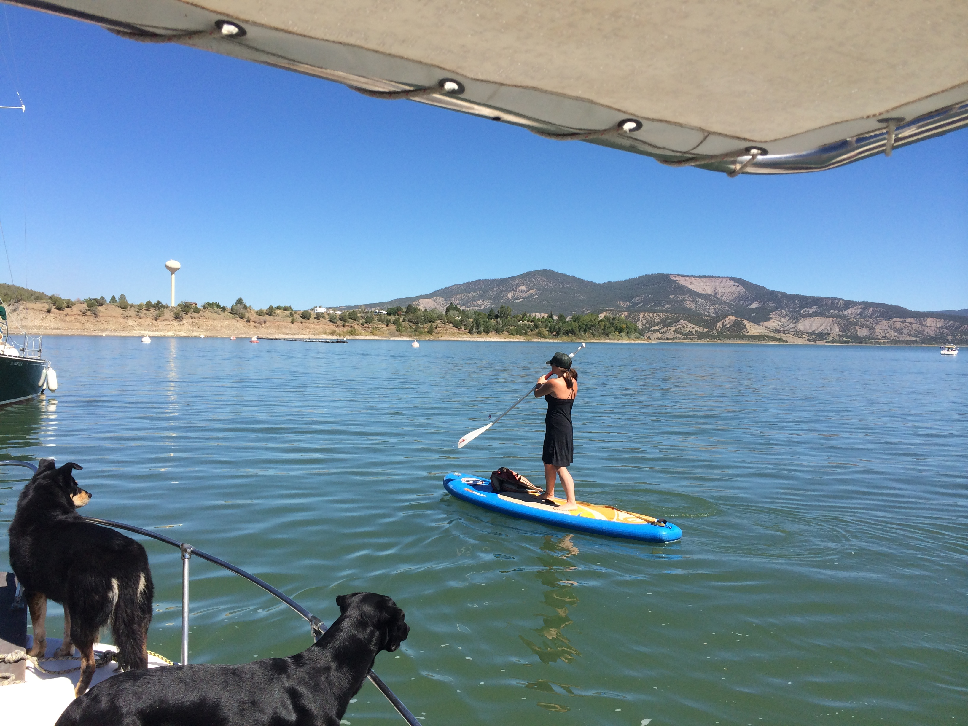 Paddleboarding off the boat