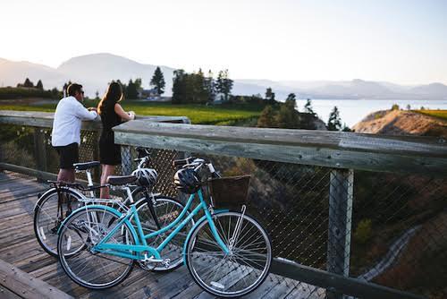 Velo Vino - A Cycling Wine Tour