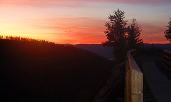 Monashee Adventure Tours - Myra Trestles Sunset Tour