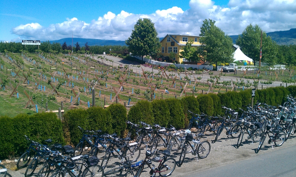 Monashee Adventures - Wine route cycle tour